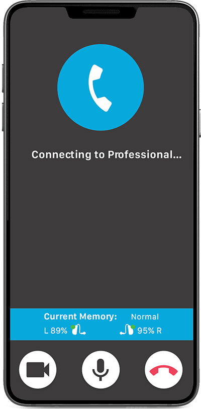 Image of Connecting to Professional screen